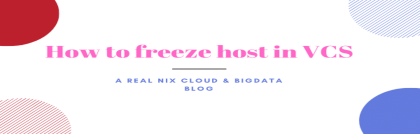 How-to-freeze-host-in-VCS